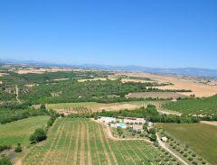 Mas de Trotte-Vache et Plateau de Valensole - Vue aérienne