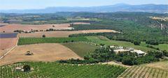 Mas de Trotte-Vache - Vergers d'amandiers - Plateau de Valensole - Provence